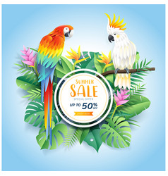 summer sale card with cockatoo and scarlet macaw vector image