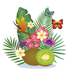 tropical garden with kiwi vector image
