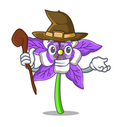 Witch columbine flower mascot cartoon vector