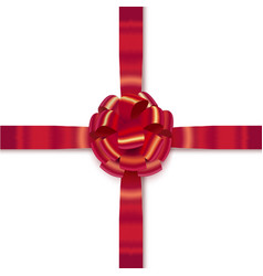 isolated realistic bow with ribbons vector image