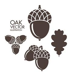 Oak Acorn Leaf vector image
