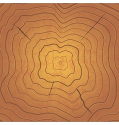 Bright tree rings square realistic vector image vector image