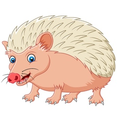 Cartoon hedgehog being looked vector