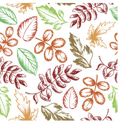 leaves seamless pattern hand drawn sketch vector image