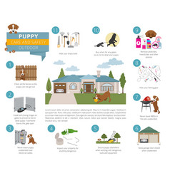 puppy care and safety in your home outdoor pet vector image
