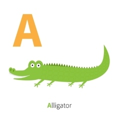 Letter A Alligator Zoo alphabet English abc with vector image