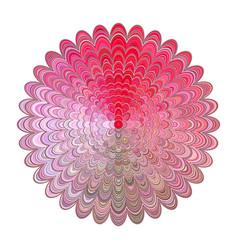 colored abstract floral mandala design - digital vector image vector image