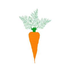 big carrot vector image