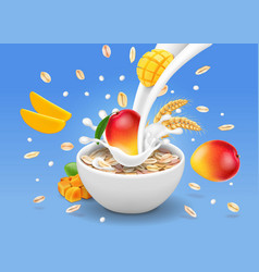 instant oatmeal mango vector image