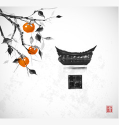 Persimmon tree with big fruits and traditional vector