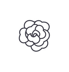 rose flower line icon concept rose flower flat vector image