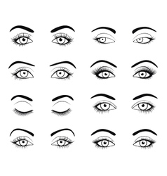 Set female eyes and brows image vector