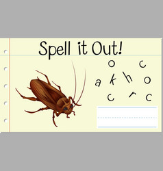 Spell english word cockroach vector