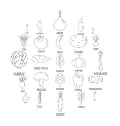 vegetables icons set outline style vector image