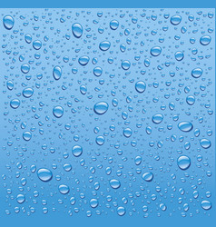 Water drops on blue background vector
