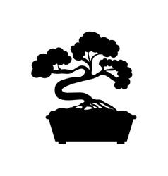 Bonsai japanese tree vector