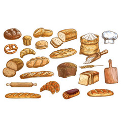 bread and pastry color isolated sketches vector image