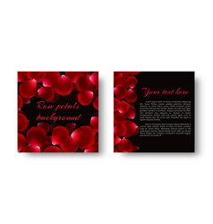 Leaflet with red rose petals vector