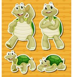 Turtle set vector image