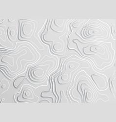 3d topographic map contour elevation concept vector