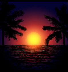 tropical beach at sunset vector image