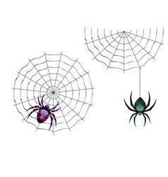 Cartoon Spider3 vector image vector image
