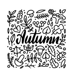 autumn leaves doodles set hand drawn lettering vector image