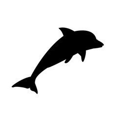Dolphin marine wildlife water animal silhouette vector