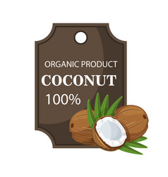 ripe coconuts and palm leaves around circle badge vector image