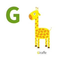 Letter G Giraffe Zoo alphabet English abc with vector image