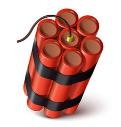 Bundle of red dynamite vector image