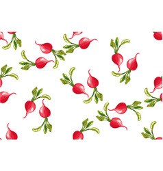 seamless pattern of radishes vector image