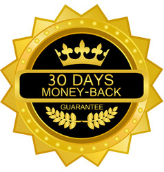 thirty days money back guarantee vector image