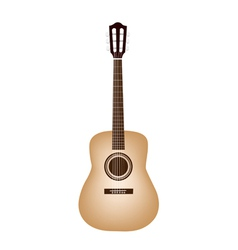 A Beautiful Classical Guitar on White Background vector image
