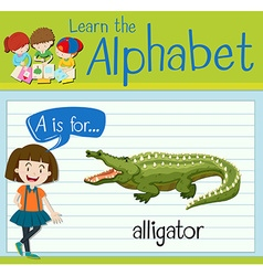 Flashcard letter a is for alligator vector