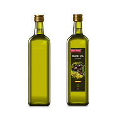olive oil glass bottles with olive oil splash vector image