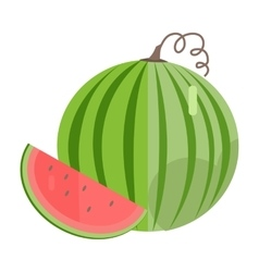 Watermelon In Flat Style vector image