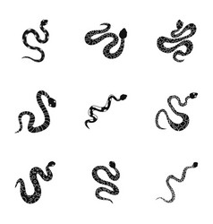 Wild snake icon set simple style vector
