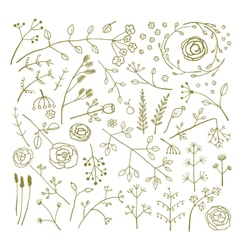 Field Flowers and Plants Decoration Collection vector image vector image
