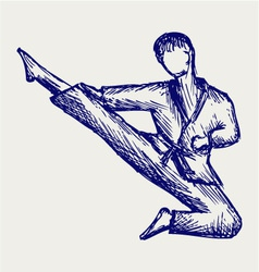 Karate male fighter young vector image vector image