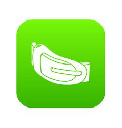 Fashion woman belt icon green vector