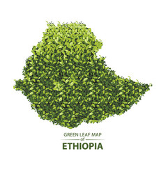 Green leaf map ethiopia a vector