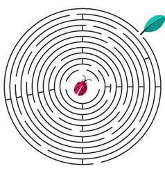 Maze Circle Maze with Ladybug and Leaf on W vector image