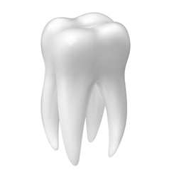 Molar tooth icon vector image vector image