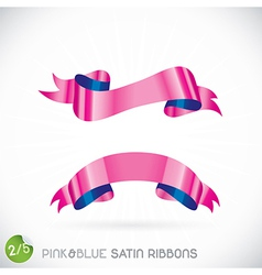 Pink Blue Satin Ribbons vector image