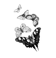 Set black white butterflies of a tattoo vector