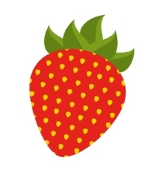 strawberry fresh fruit icon vector image
