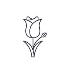 tulip line icon concept tulip flat sign vector image