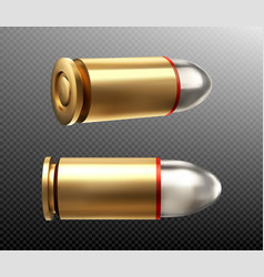 bullets copper nine mm shots side and rear view vector image