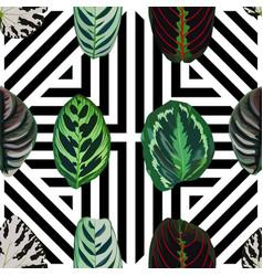 leaves geo seamless pattern vector image